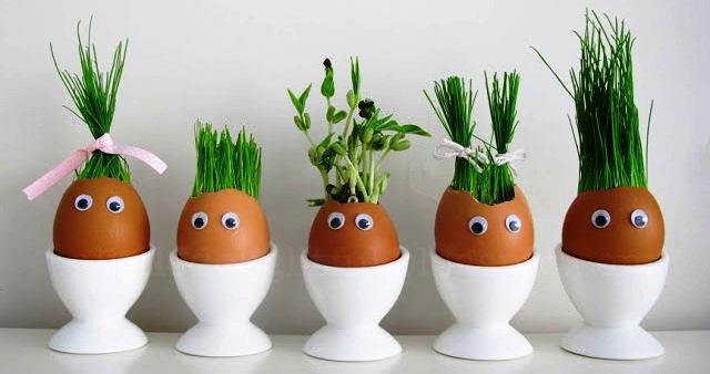 пророщенные яйца
