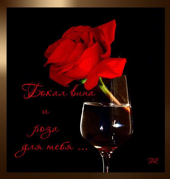 Бокал вина и роза для тебя (569x600, 50Kb)
