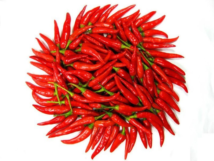 Frozen_Fresh_Red_Pepper_Chilli_Dried_Red_Chilli (700x525, 90Kb)