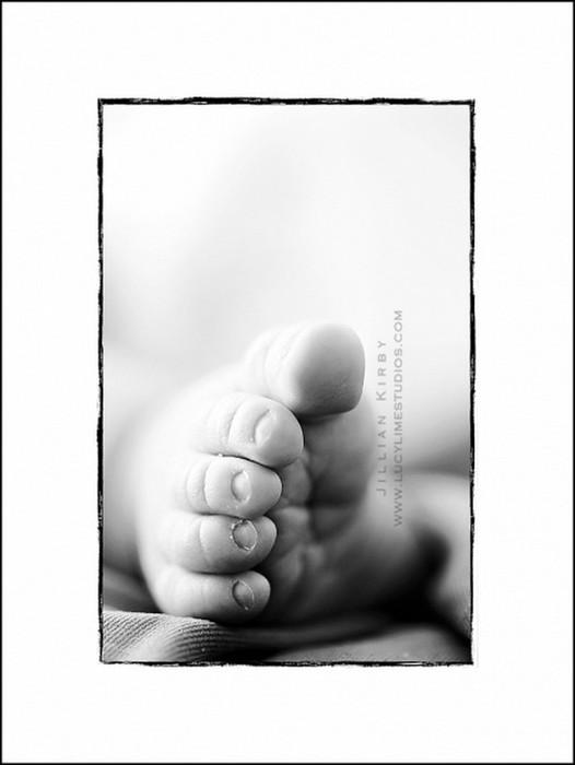 Профессиональные фото детей от студии Lucy Lime 66 (526x700, 38Kb)