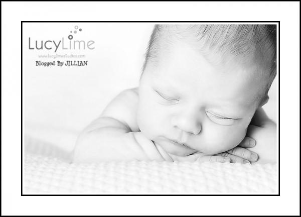 Профессиональные фото детей от студии Lucy Lime 127 (600x432, 33Kb)