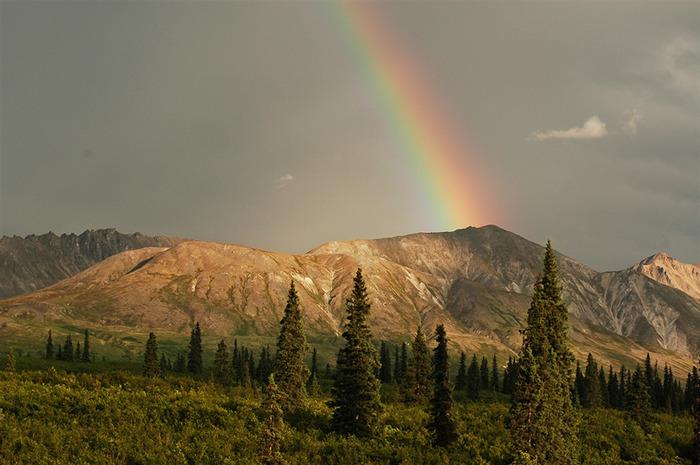 Rainbow_14 (700x465, 115Kb)