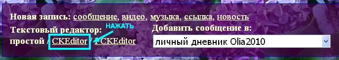 3807717_23 (687x123, 132Kb)