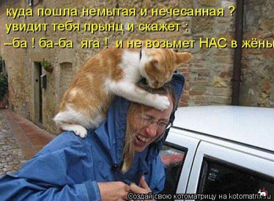 1322171259_1322141855_12-photo (550x404, 60Kb)