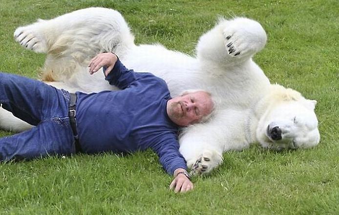 Man_Polar_Bear_2 (694x440, 57Kb)