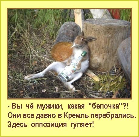 4309103_Oppoziciya_gylyaet (458x453, 74Kb)