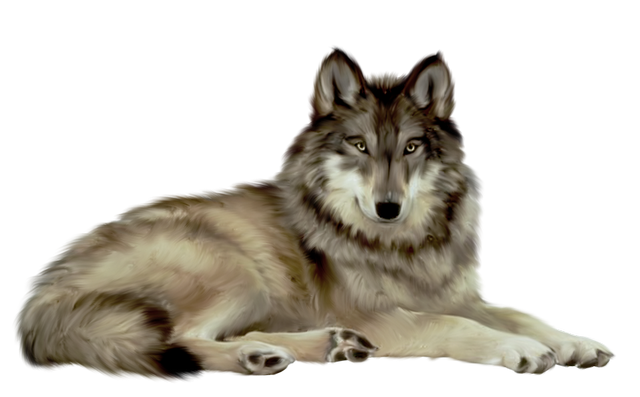 лукоморье_fantasy_collab (3) (640x397, 320Kb)