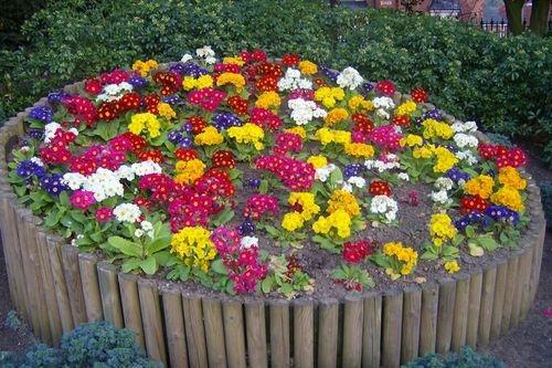 Забота о красоте школьной клумбы.  2. 1. Цель проекта: разместить цветы и ухаживать за школьной клумбой.