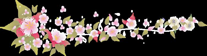 4287072_flowers (700x190, 98Kb)