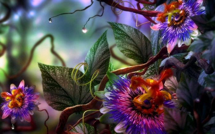 Райские цветы картинки 3