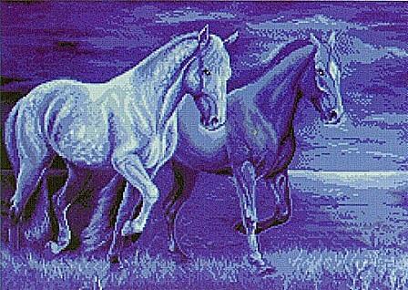 koni (1) (448x318, 88Kb)