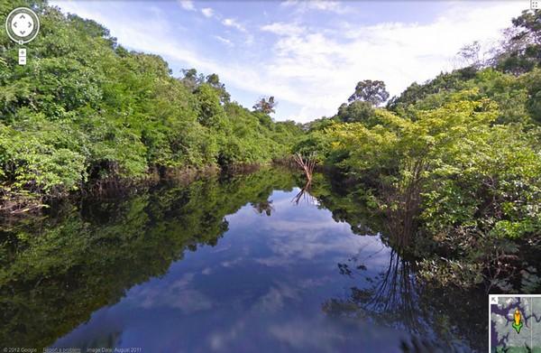 3925073_rainforestview1 (600x391, 90Kb)