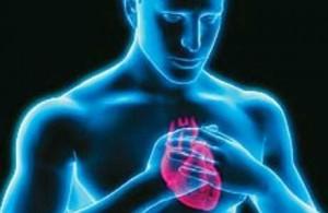 3424885_priznakipokotorymmozhnoopredelitinfarktnew300x195 (300x195, 14Kb)