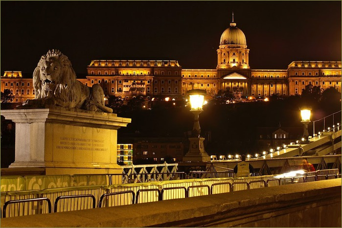 Ночной Будапешт 16625