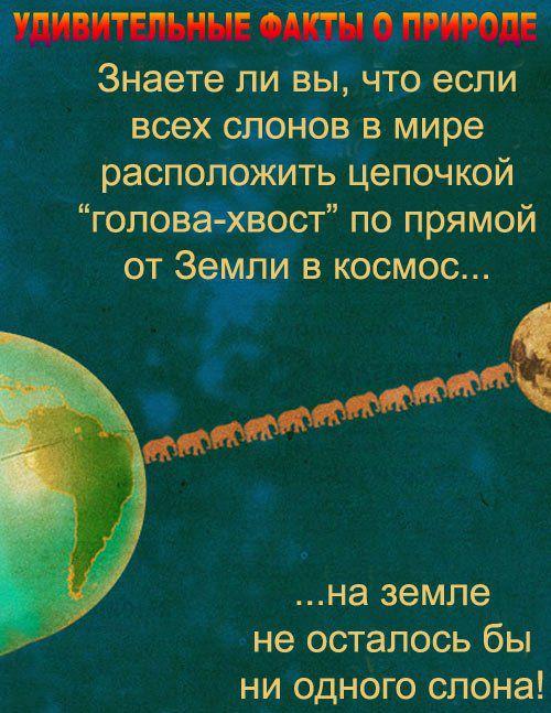 fakty_o_prirode_01 (500x647, 91Kb)