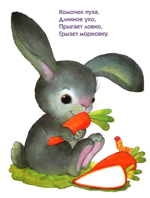 управление загадки про животных с рисунками для подписчиков моих