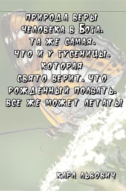 Безымянный111 (423x640, 62Kb)