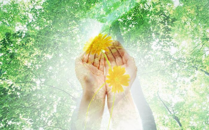 свет в руках и цветы! (699x437, 133Kb)