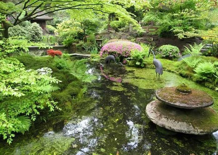 Японский сад фото 6 (700x499, 141Kb)