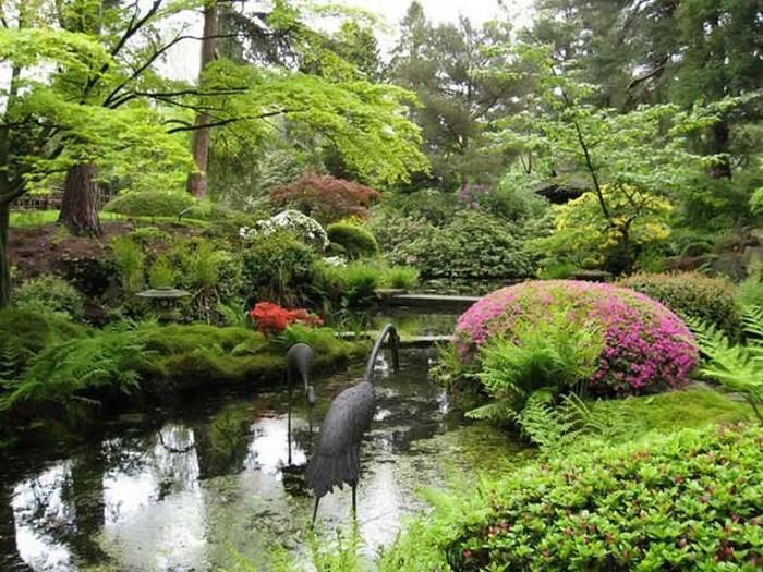 Японский сад фото 13 (700x525, 146Kb)