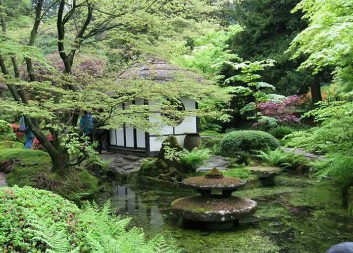 Японский сад фото 15 (700x500, 140Kb)