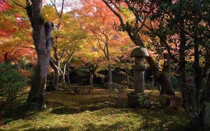 Японский сад фото 17 (700x437, 107Kb)