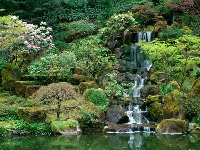 Японский сад фото 30 (700x525, 148Kb)