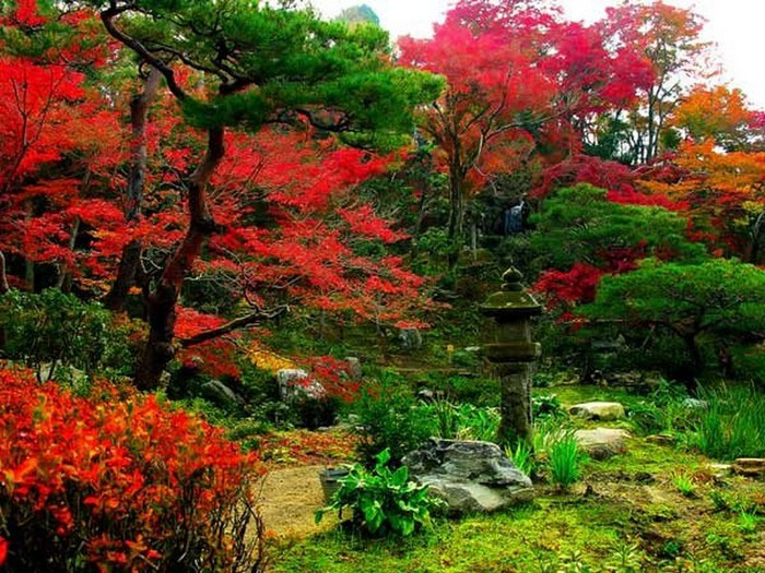 Японский сад фото 41 (700x525, 154Kb)