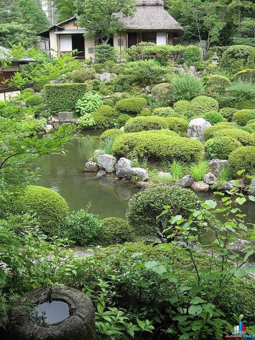 Японский сад фото 54 (525x700, 546Kb)