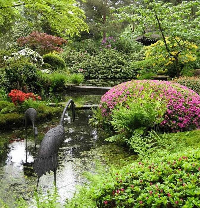 Японский сад фото 58 (673x700, 230Kb)