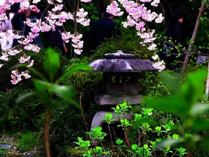 Японский сад фото 60 (700x525, 120Kb)