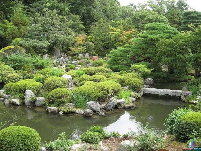 Японский сад фото 66 (700x525, 189Kb)