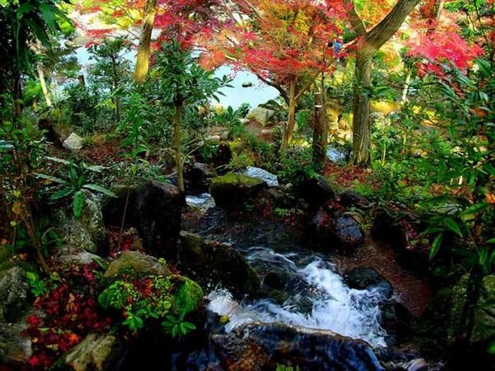 Японский сад фото 76 (700x525, 147Kb)