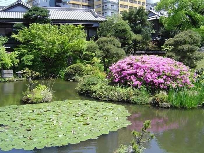 Японский сад фото 78 (700x525, 142Kb)