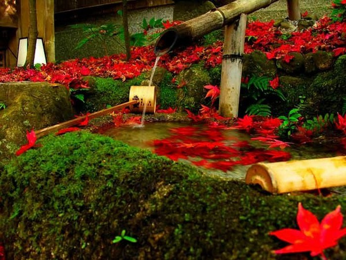 Японский сад фото 81 (700x525, 118Kb)