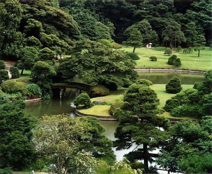 Японский сад фото 84 (700x573, 154Kb)