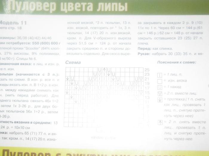 IMG_3741 (700x525, 203Kb)