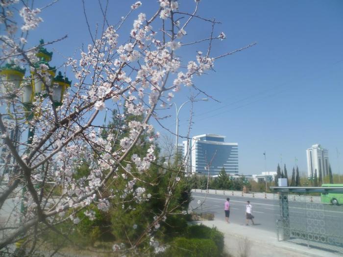 погода/4587378_353_Pogoda (700x525, 60Kb)