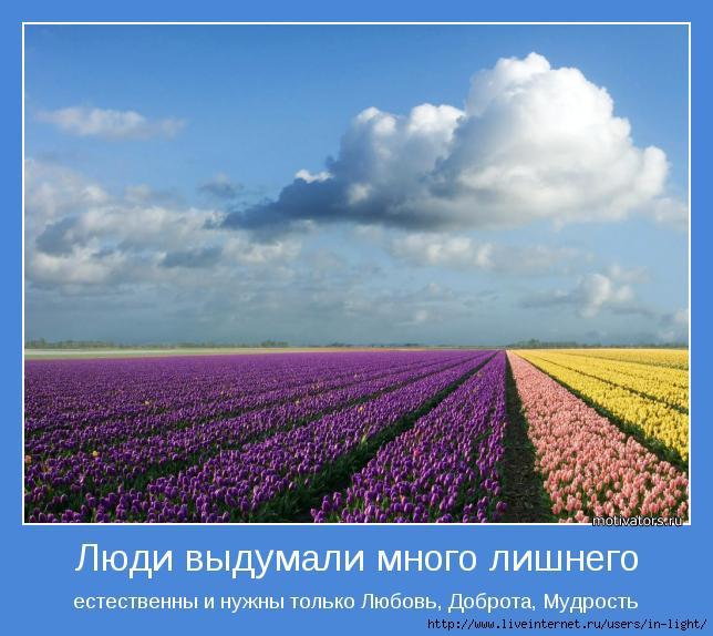 мотиватор любовь позитив 14 (644x574, 171Kb)