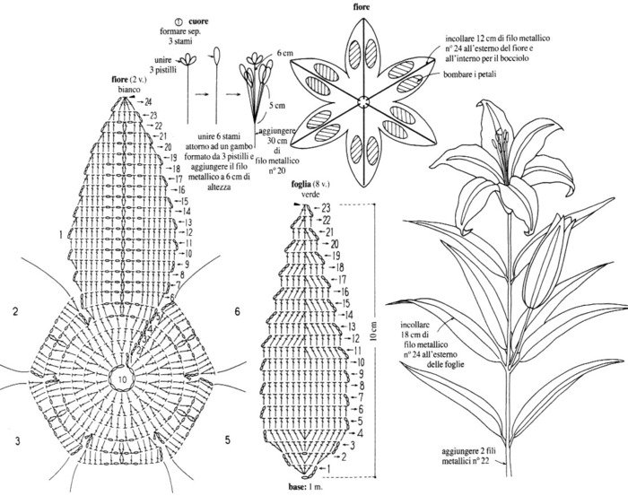 схема к лилии (700x553, 112Kb)