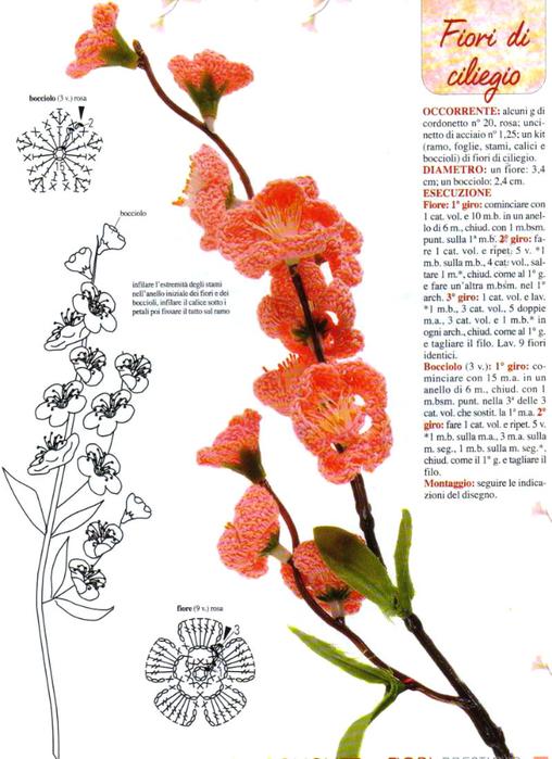 цветущая ветки черешни (508x700, 315Kb)