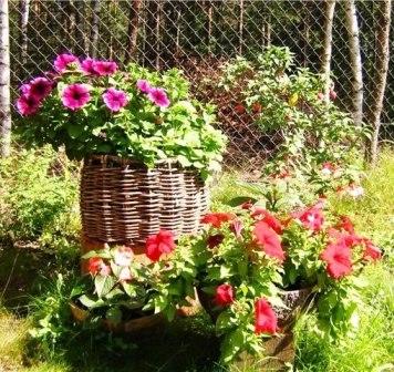 цветы6 (356x336, 58Kb)