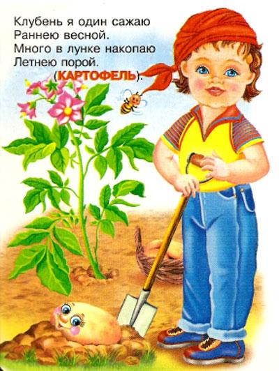 Способ выращивания клубники 25