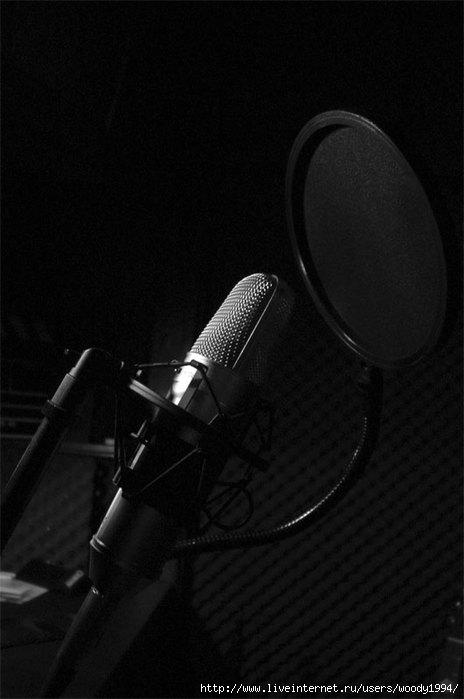 микрофонw (464x700, 107Kb)