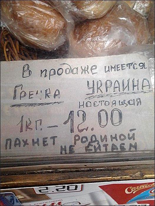 2697749_grechka (526x700, 81Kb)