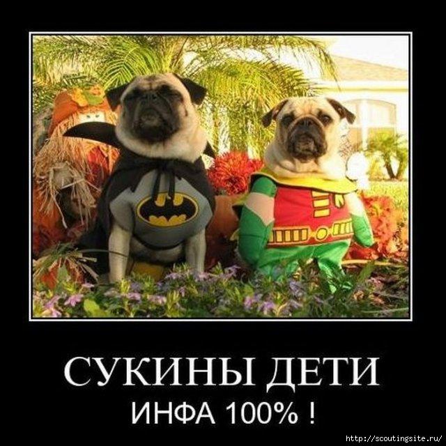 1291898122_demotivatory_09 (640x640, 182Kb)