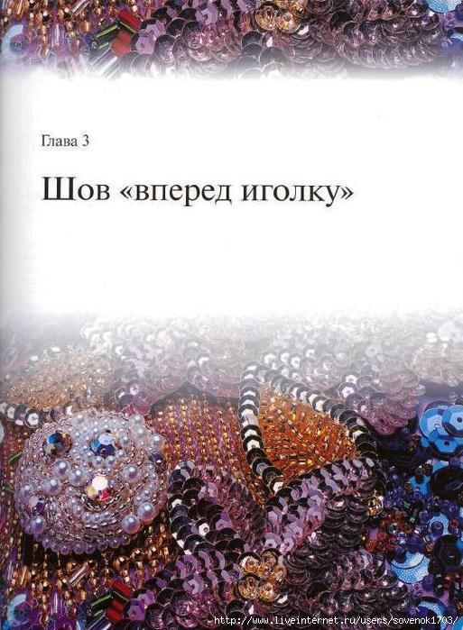 4446647_Vishivka_biserom_i_blestkami__Novie_tehniki_i_yzori_19 (513x700, 209Kb)