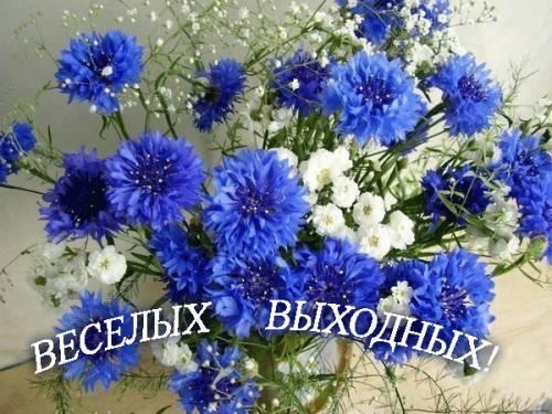 3826117_680913925 (500x375, 46Kb)