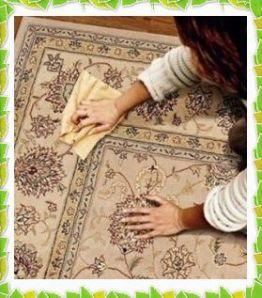 Чистка ковра в домашних условиях/2719143_877779 (262x298, 23Kb)