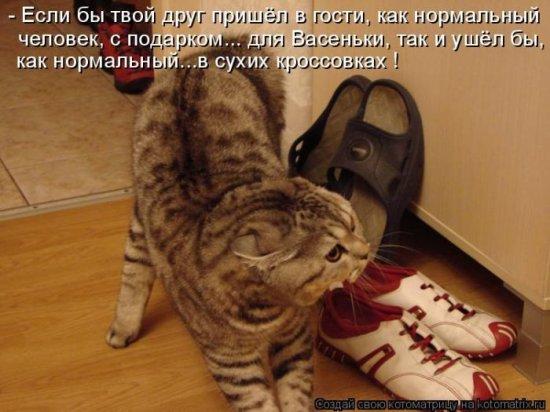 1298810697_1298619715_kotomatrix_04 (550x412, 48Kb)